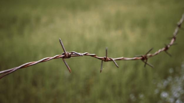 有刺鉄線。心配を感じるフェンスの有刺鉄線