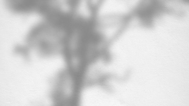 Абстрактная текстура предпосылки листьев тени на бетонной стене