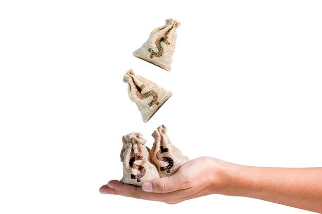 Мешки доллара