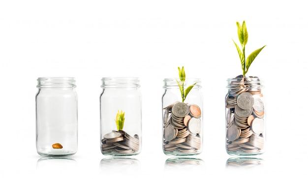 白の瓶の中にスタッキングコインに輝く植物。銀行預金および株式投資の概念の配当。