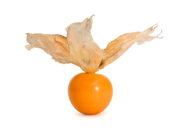 Крупным планом один спелый апельсин накидка крыжовника