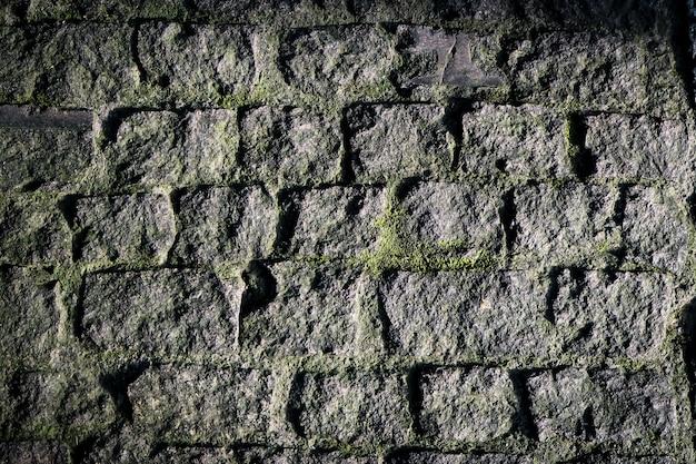 苔岩の壁の美しい自然感テクスチャ背景