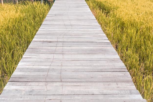 夏、自然のビンテージ背景の春の野の色の中で木の橋