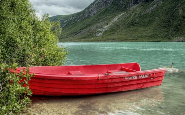 ノルウェーの風景の中の大まかな自然