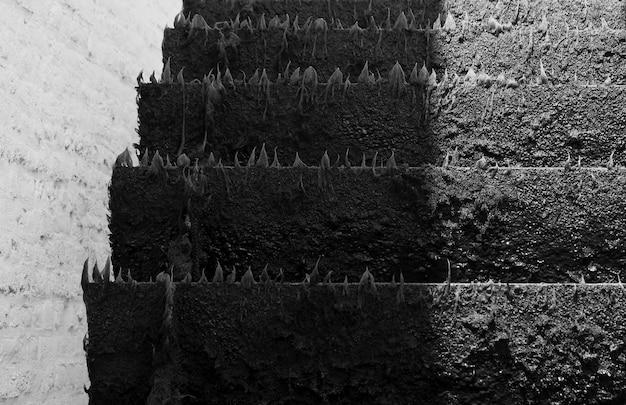 羽根車の黒と白のイメージ