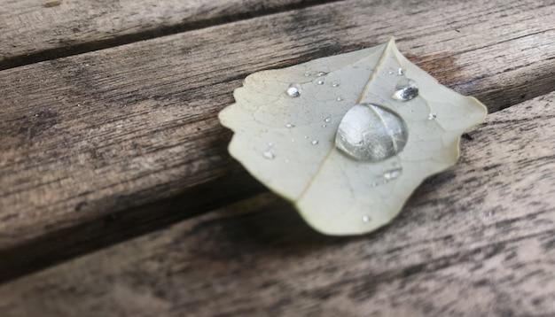 Осенний отпуск с падением на деревянный стол