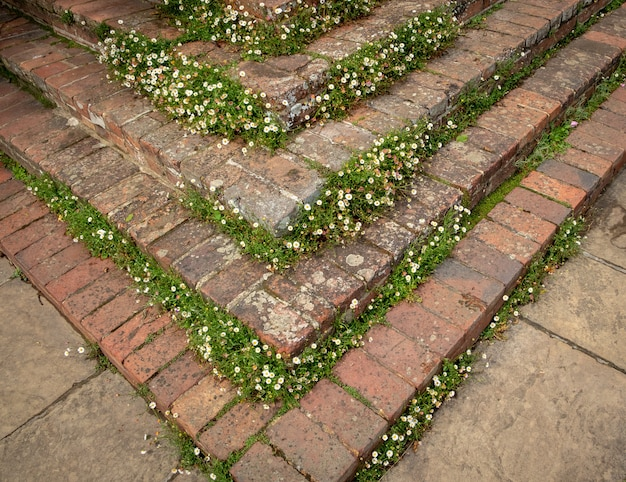 Красивые цветы, деревья и растения и ландшафтный дизайн сада в сиссингхерст кастте гарденс