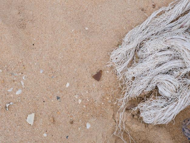 ビーチでロープ。