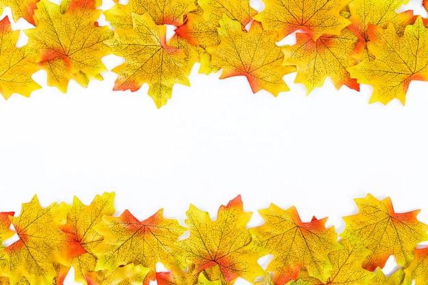 明るい黄色のカエデの葉。