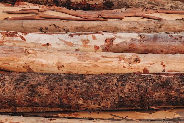 背景木材と自然