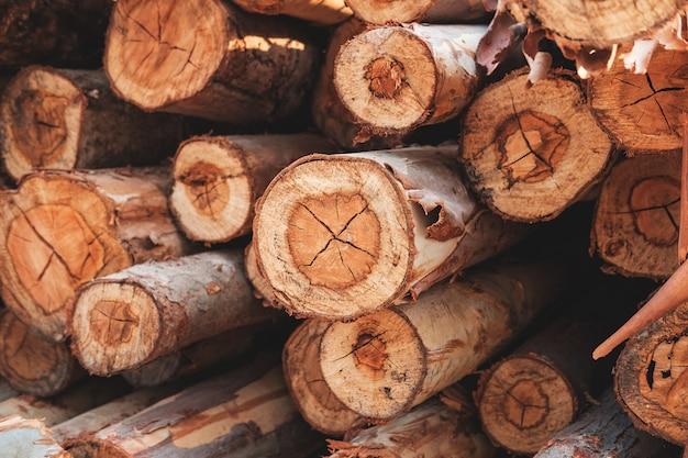 Таблица текстур из срезанного дерева