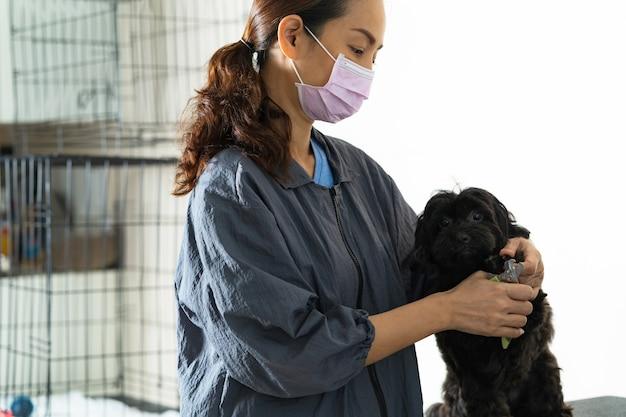 犬の美容院の女性の犬の爪を切断