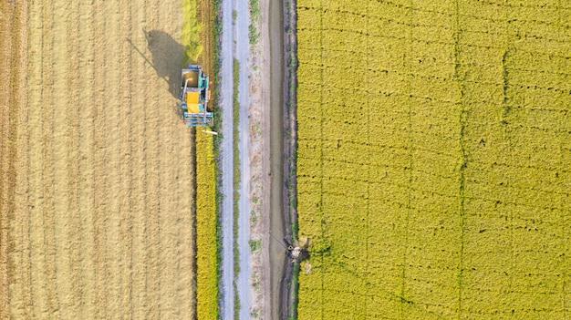 上から田んぼで作業ハーベスタマシンの空中平面図