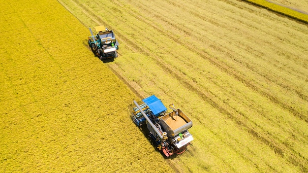 上から田んぼで作業ハーベスタマシンの航空写真
