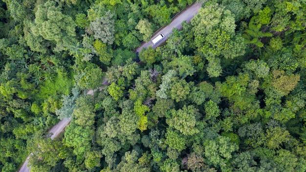 Воздушный вид сверху вождение автомобиля по лесу на проселочной дороге, вид с дрона