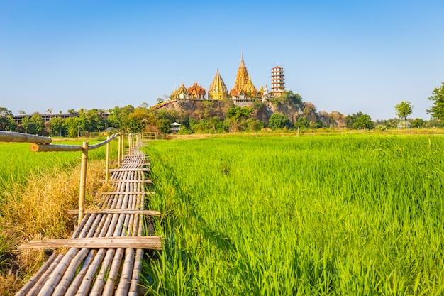 ジャスミンの田んぼとワットタムスア寺院(タイガー洞窟寺院)の風景