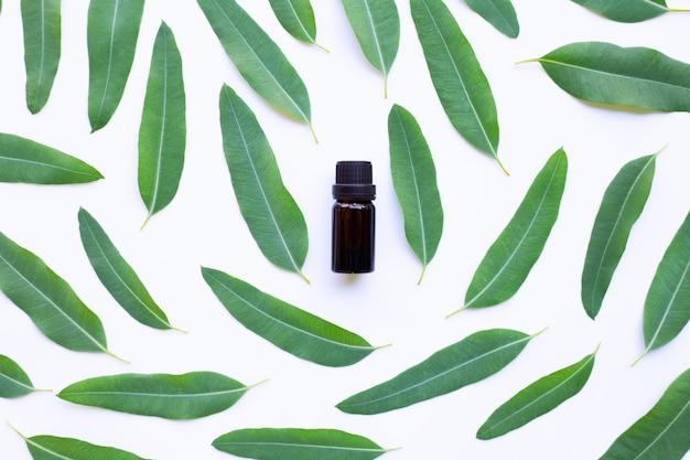 Бутылка эвкалиптового масла с листьями на белом.