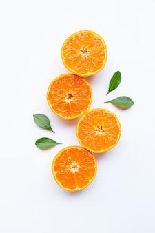 オレンジ色の果物と白い背景の上の緑の葉。