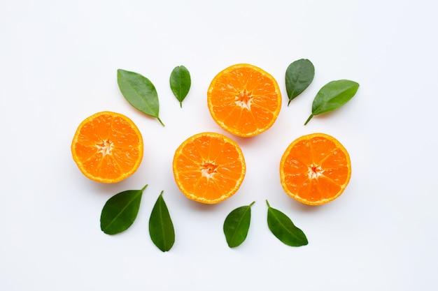 白い背景の上の葉とオレンジ色の果物。