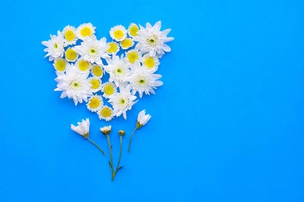 白黄色の花の組成。青い紙の上の菊