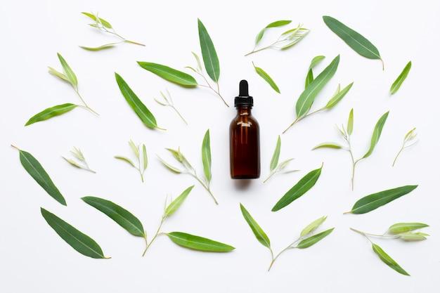 Бутылка эфирного масла евкалипта с листьями на белизне.