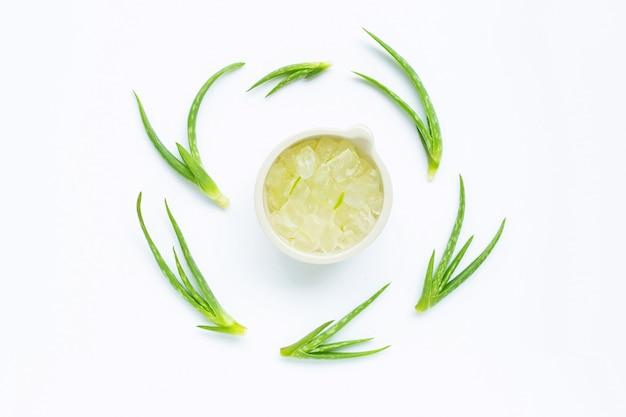 アロエベラは健康のために人気のある薬用植物です。