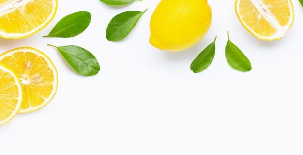 新鮮なレモンと葉のスライスで作られたフレーム