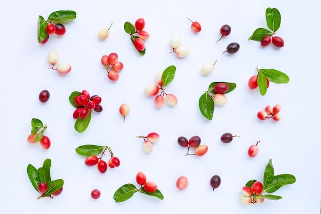 カルンダまたはカロンダフルーツの葉