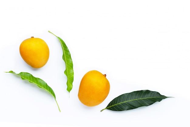 Тропические фрукты, манго.