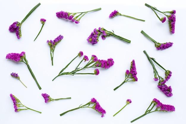 Статические цветы на белом