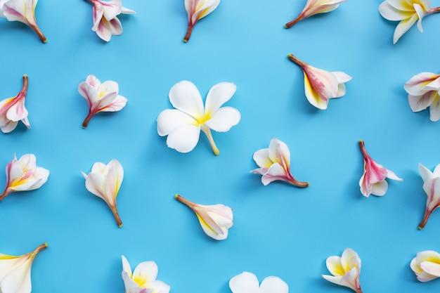 青色の背景にプルメリアやフランジパニの花。
