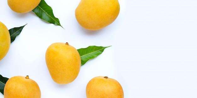 Тропический плодоовощ, манго на белой предпосылке. вид сверху