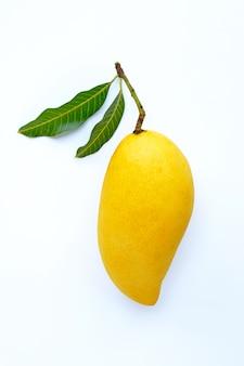 Взгляд сверху манго, тропического плодоовощ сочного и сладостного.