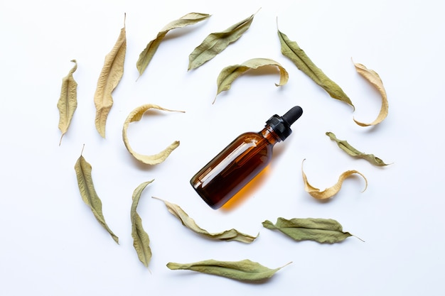 Эвкалиптовое масло бутылка с сухими листьями на белом