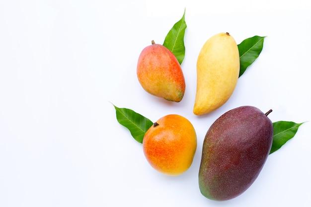 Тропический плодоовощ, манго на белой поверхности.