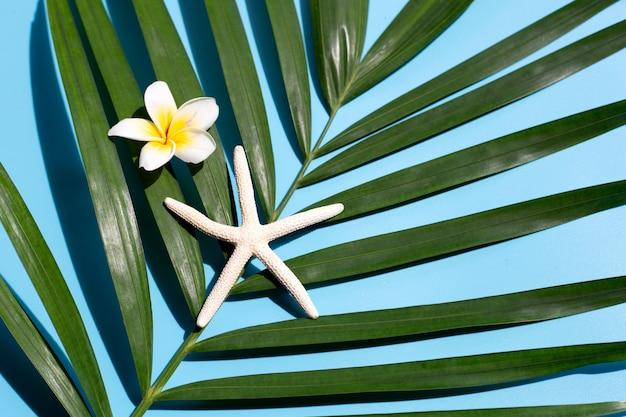 青い背景に熱帯のヤシにプルメリアやフランジパニの花を持つヒトデを残します。夏の休日のコンセプトをお楽しみください。上面図