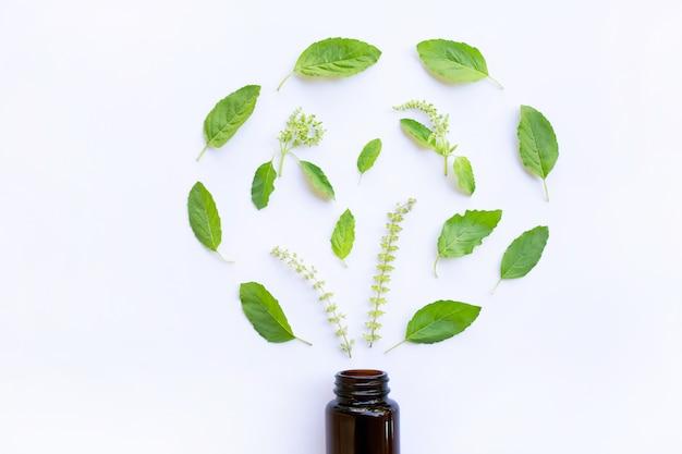 緑の聖なるバジルの葉と花が白い背景にある医療ボトルガラス。