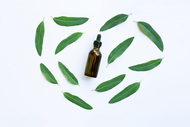 ユーカリオイルボトル、白い背景に葉。