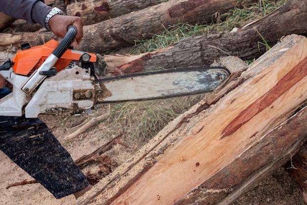 Рабочий работает с бензопилой. бензопила крупным планом. дровосек распиливает дерево с бензопилой. человек резки дерева с пилой, пылью и движениями.