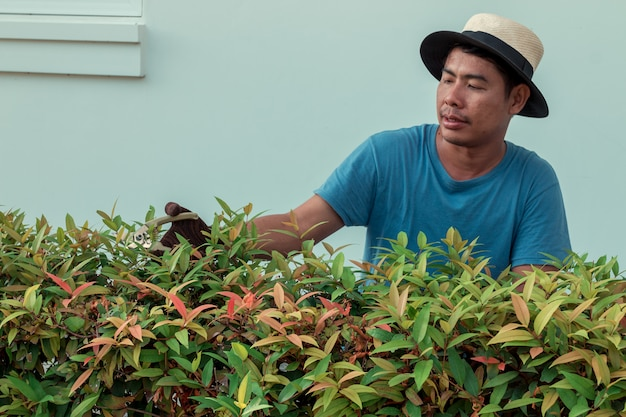 庭の枝を剪定する男
