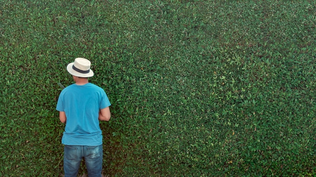 Мужчина обрезает ветки в саду