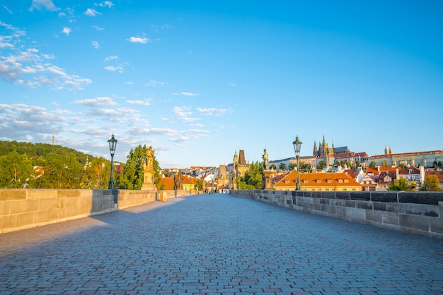 晴れた日にプラハ、カレル橋、ヴルタヴァ川、聖ヴィート大聖堂の眺め