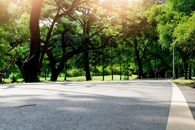 公共の公園で道路上の白い線
