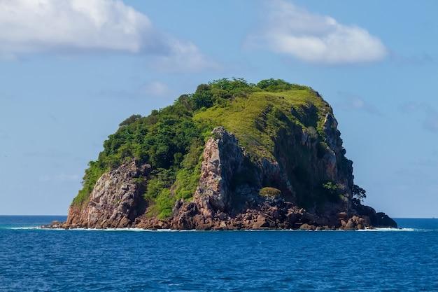 タイの海の木と石灰岩の山々
