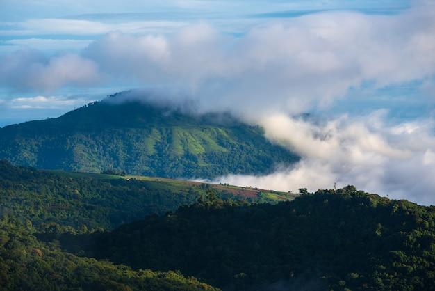 霧の雲がタイの山を覆っています。