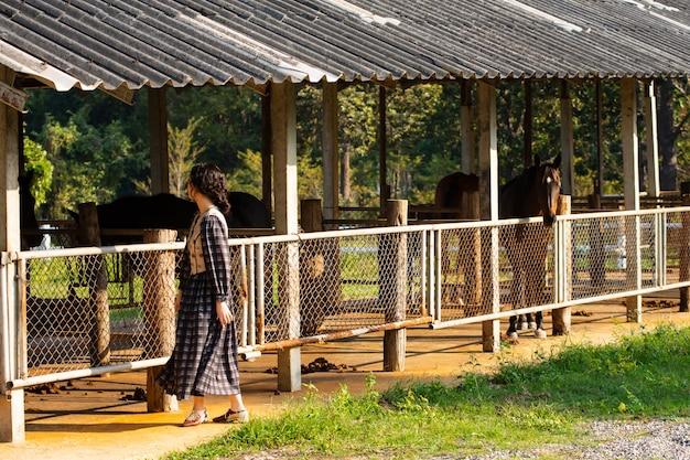 女性の朝は馬小屋に立っている間馬の歯をチェックします。