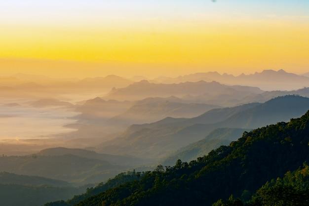 朝のシーン、美夏の霧のイメージ、背景の金の日光、幻想的な山の風景に霧覆われた谷の魅力的なビュー