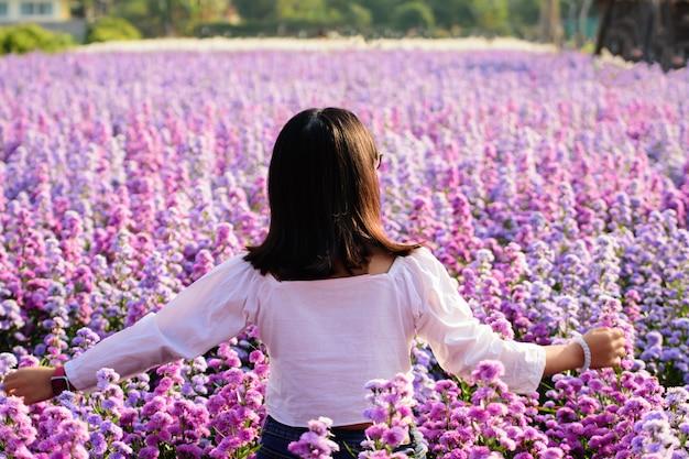 アジアタイの紫のマーガレットの花のフィールドで白いドレスを着た女性。