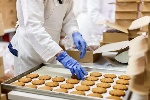 クッキー工場
