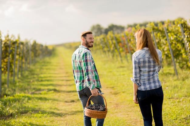 Молодая пара в винограднике